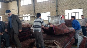 Green Front searches for Persian rugs at the Rug Warehouse